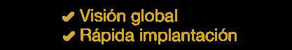 Visión global y rápida implantación